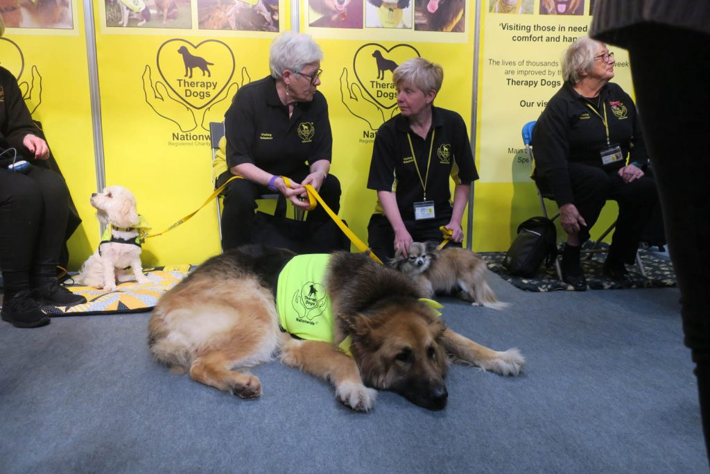 Crufts 2020 - pets as therapy - Katrina Wilson Dog Photography-2