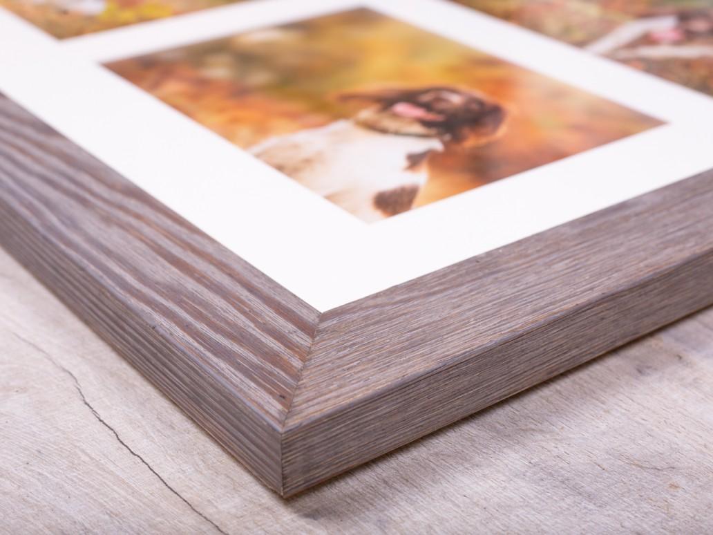 Framed Products - Katrina Wilson Dog Photography Bedfordshire-5