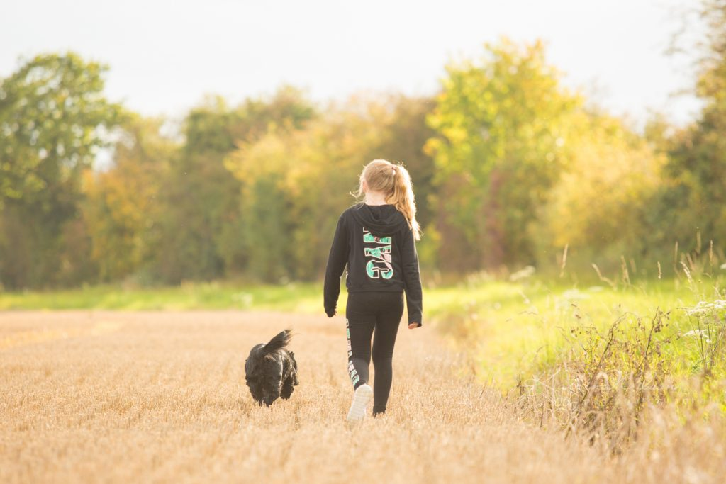 How dogs improve your mental health - Katrina Wilson Dog Photographer Bedfordshire-10