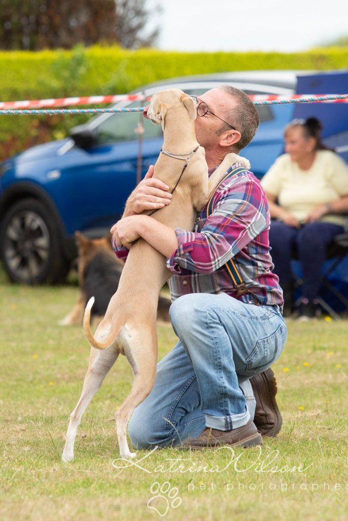 Companion dog show cute dog - Katrina Wilson Pet Photographer Bedfordshire-10