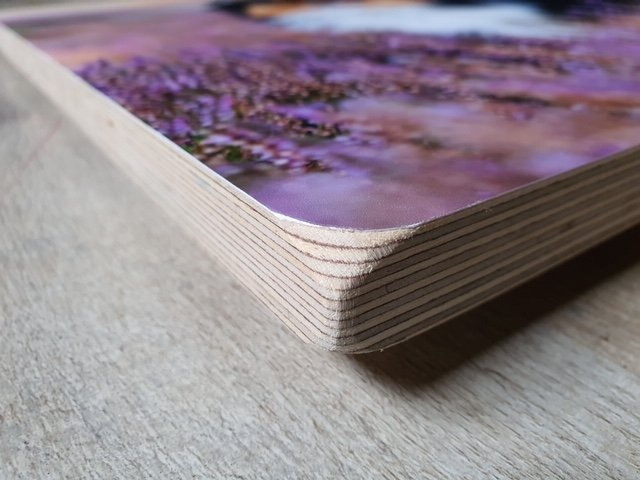 Birchwood print