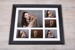 Frames - Katrina Wilson Dog Photography Bedfordshire